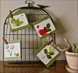 birdcage+pot