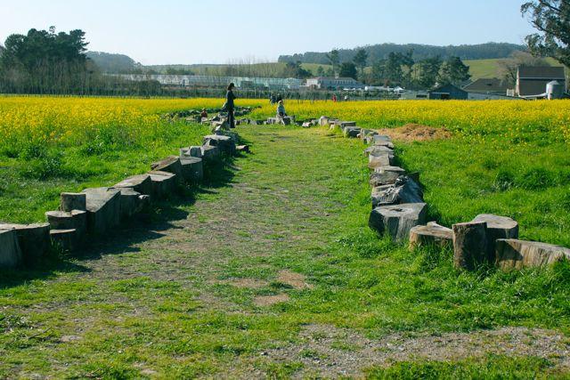 Mustard Path