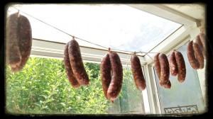 Drying Maltese Sausage